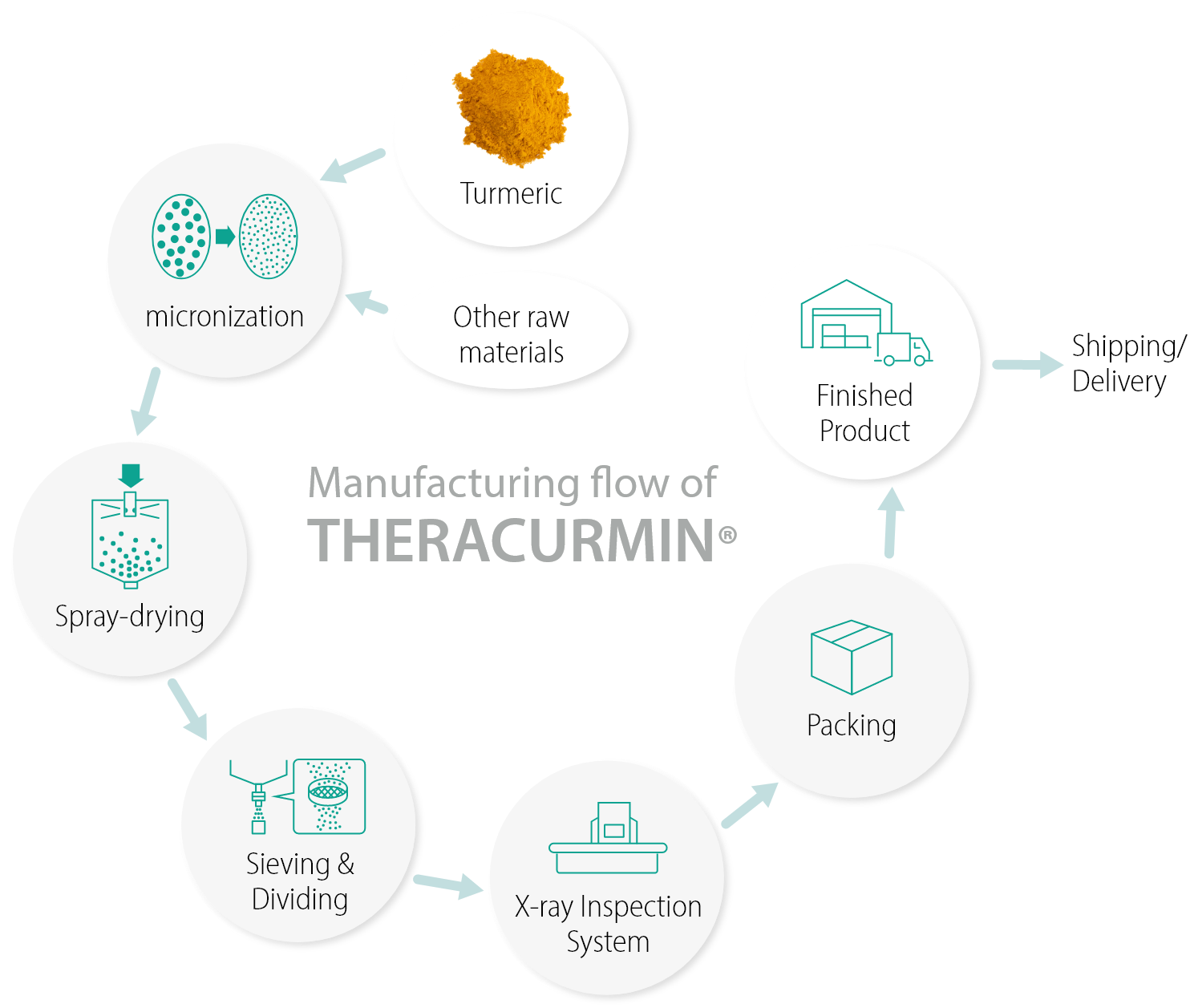 Manufacturing flow of THERACURMIN®